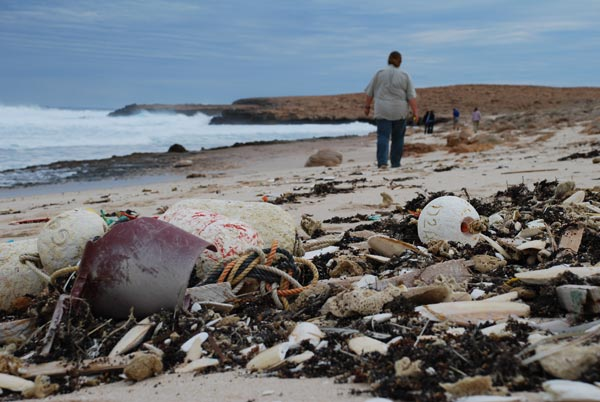 Beach Pollution Facts